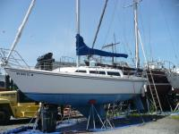 1984 Catalina         27