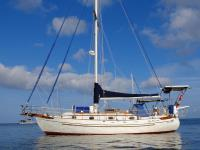 37 sailboat in Miami, Florida-USA